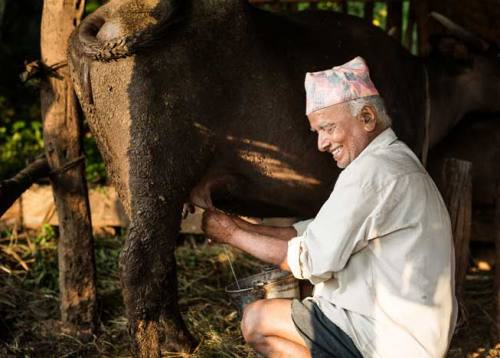 Bandipur Home Stay Tour